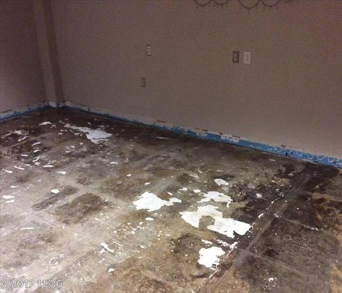 Water Damage in DeLand, FL Before