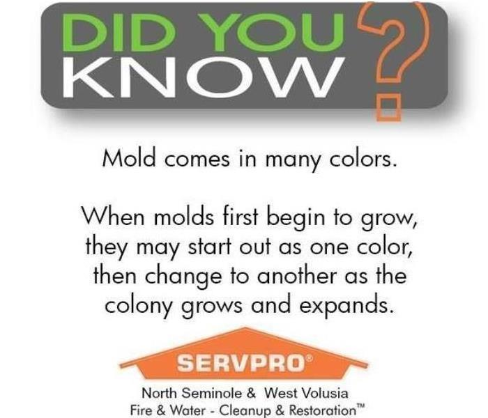 Mold Remediation Testing For Mold?
