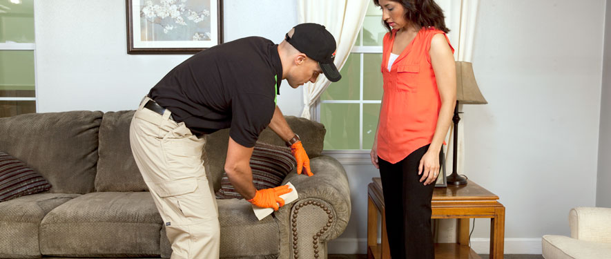 Lake Mary, FL carpet upholstery cleaning