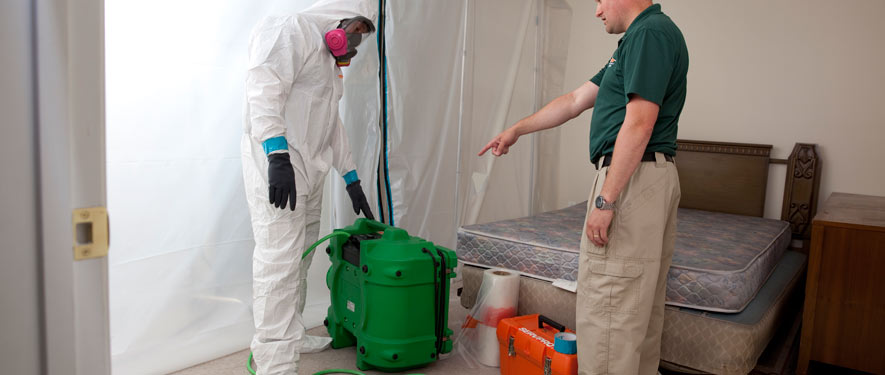 Lake Mary, FL mold removal process